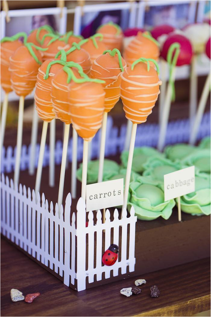 Peter Rabbit Birthday Decorations Kara 39 S Party Ideas Peter Rabbit themed 1st Birthday Party