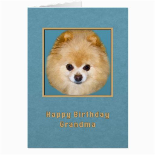pomeranian birthday cards