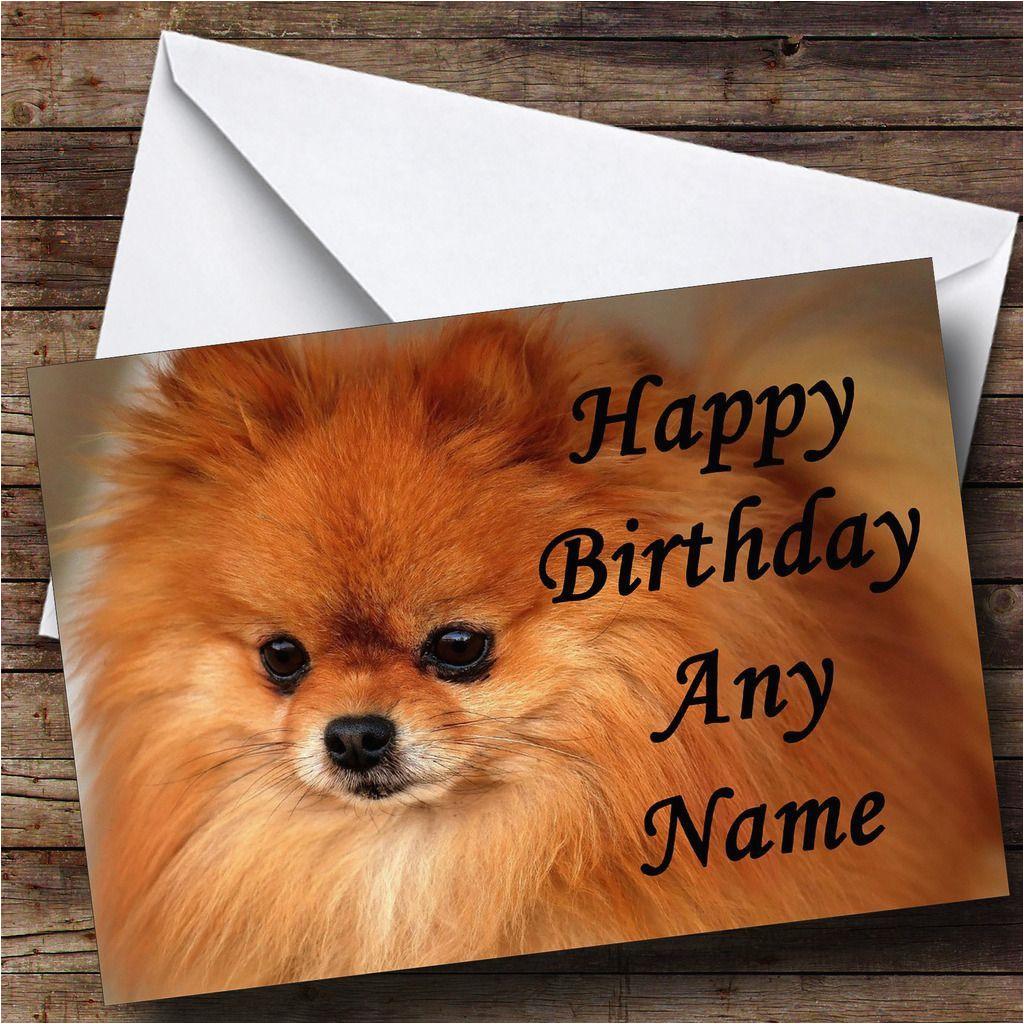pomeranian puppy dog personalised birthday card 8573 p