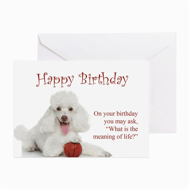 funny poodle birthday card greeting cards productid 764674908