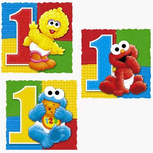 Sesame Street 1st Birthday Decorations First Party Supplies Wikii