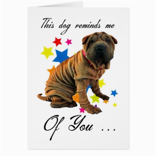 birthday card with cute shar pei humourous card zazzle