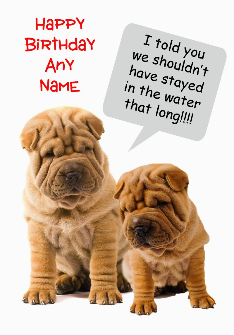 funny shar pei wrinkly dog birthday card