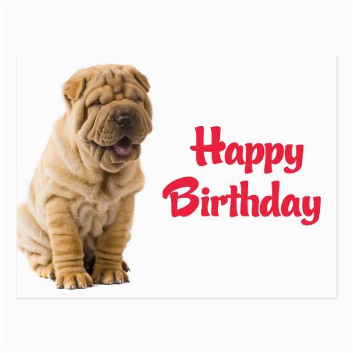 happy birthday chinese shar pei puppy dog card postcard
