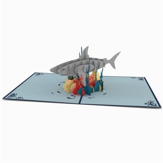 pop up shark birthday card happy birthday card by lovepopcards