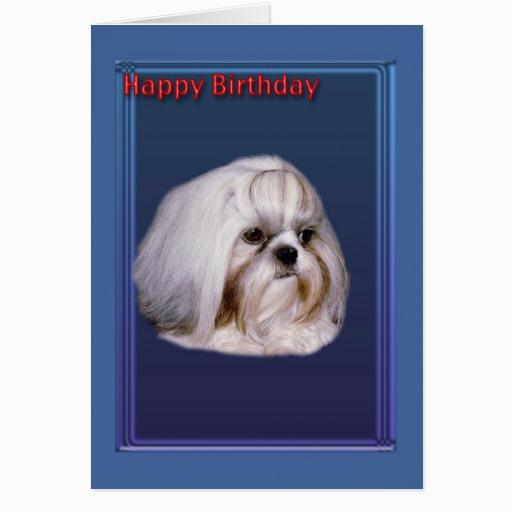 birthday greeting card with shih tzu zazzle