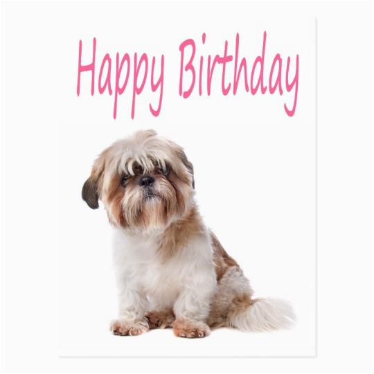 happy birthday shih tzu puppy postcard zazzle com