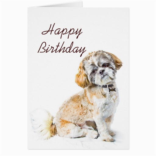 shih tzu dog happy birthday card zazzle