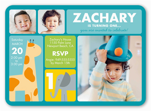 Shutterfly 1st Birthday Invitations Zoo Birthday Invitations Shutterfly