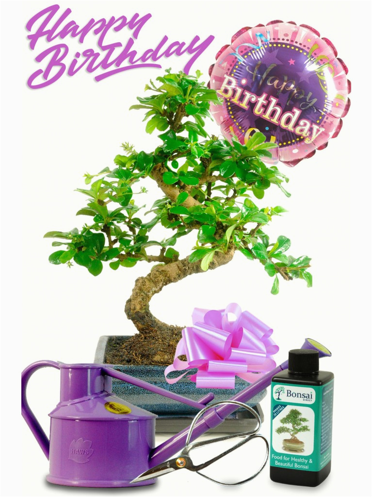 happy birthday gift set for her