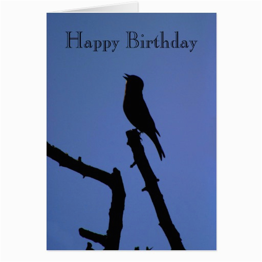 Singing Happy Birthday Cards Chaffinch Card Zazzle