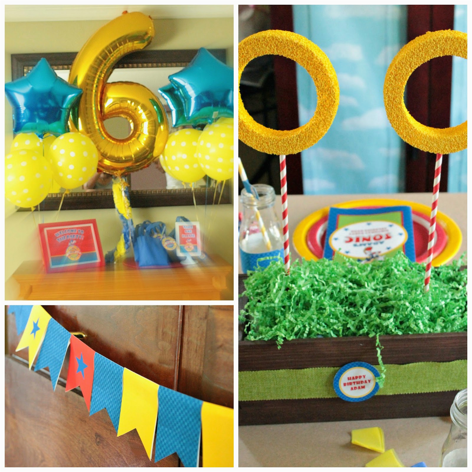 real parties adams sonic birthday party