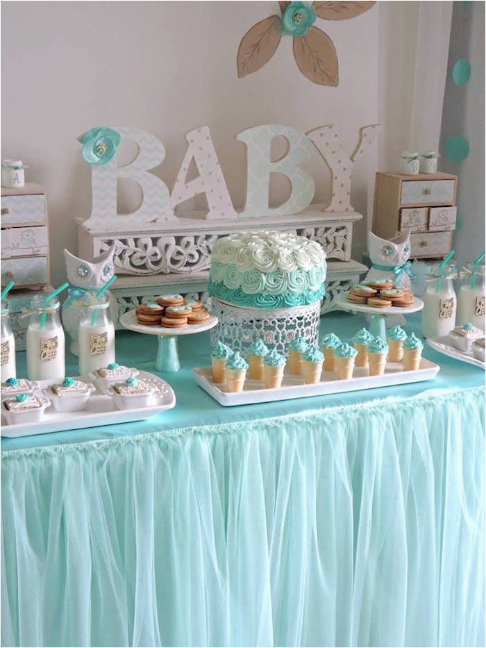 turquoise owl welcome home baby party via karas party ideas karaspartyideas com13