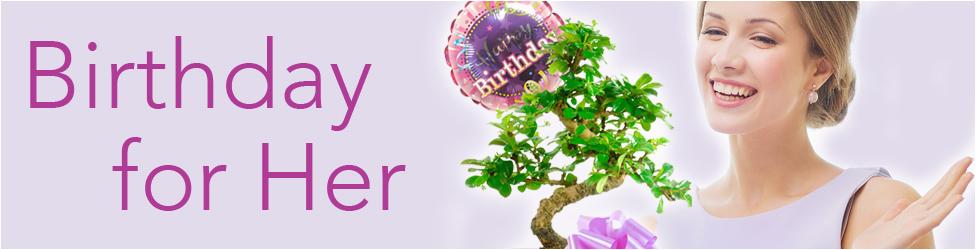 Unusual Birthday Gifts For Her Uk Pretty Bonsai Tree