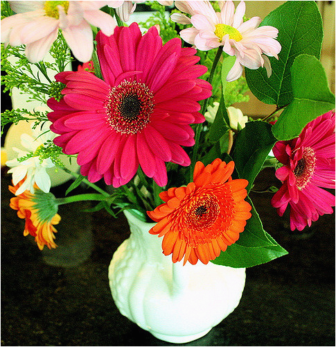 happy birthday maryann quot virtual flowers quot for maryann 39 s