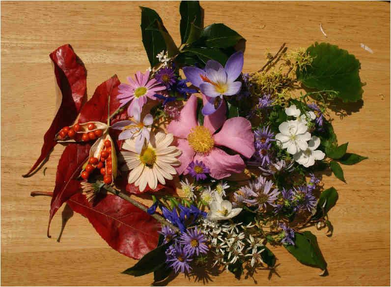 my virtual maryland garden birthday bouquet