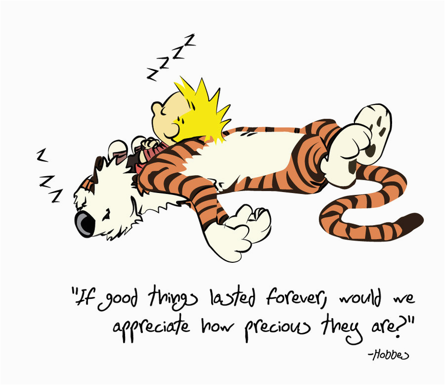 calvin and hobbes birthday quotes
