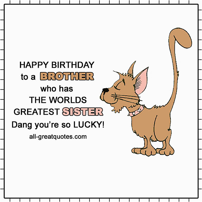 happy birthday to a brother who has the worlds greatest sister smug cat card