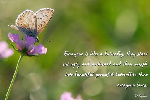 butterfly quotes for birthday