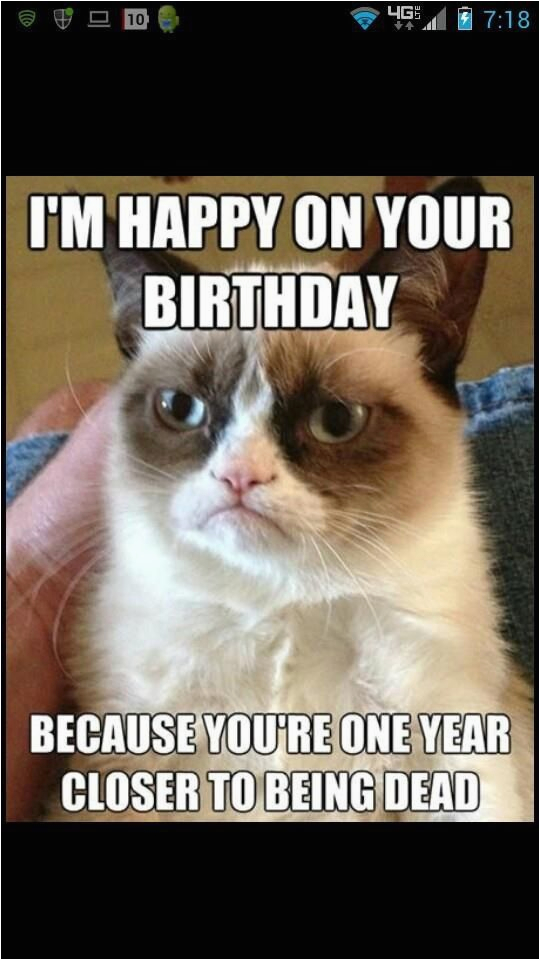 happy birthday funny grumpy quotes