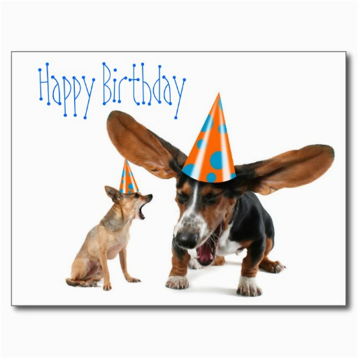 6 happy birthday quotes for dogs