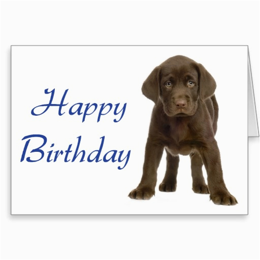 happy birthday quotes from dogs