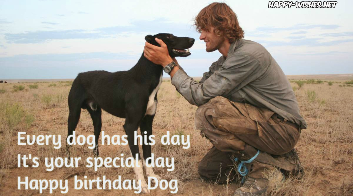 happy birthday wishes for dog