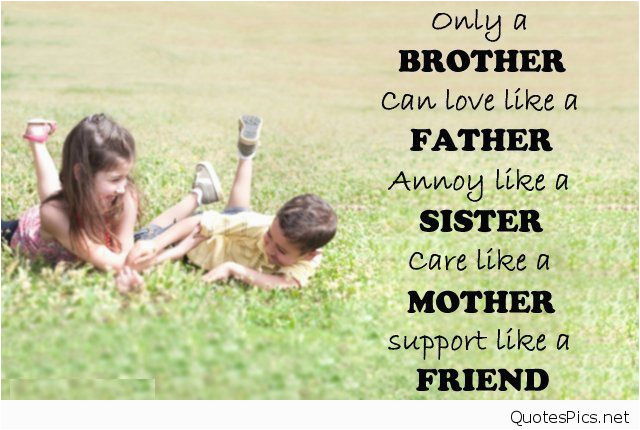 50 happy birthday brother wishes quotes messages