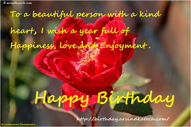 happy birthday to someone special quotes