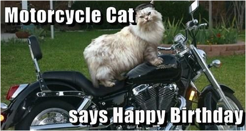 motorcycle happy birthday quotes