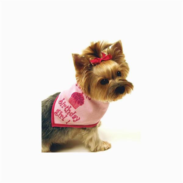 birthday girl dog bandana