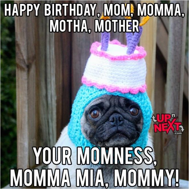 funny happy birthday pictures