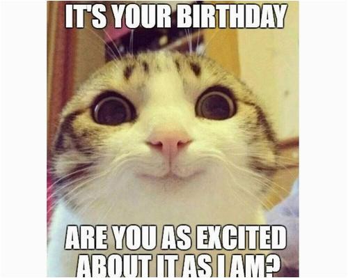 cat birthday memes