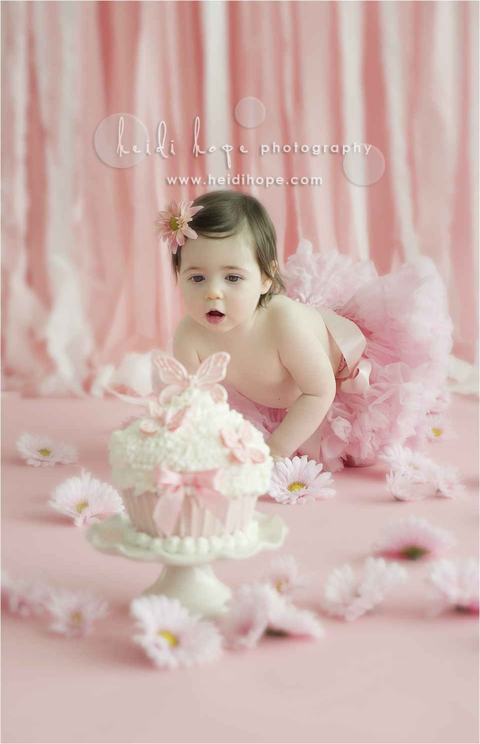 baby o turns 1 year old rhode island and central massachusetts first birthday cake smash portrait photographer
