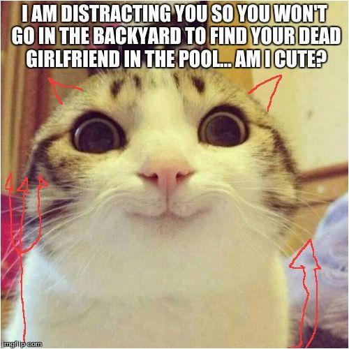 cat meme generator