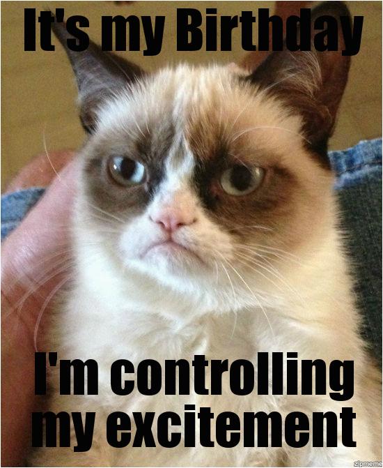sad birthday cat meme generator