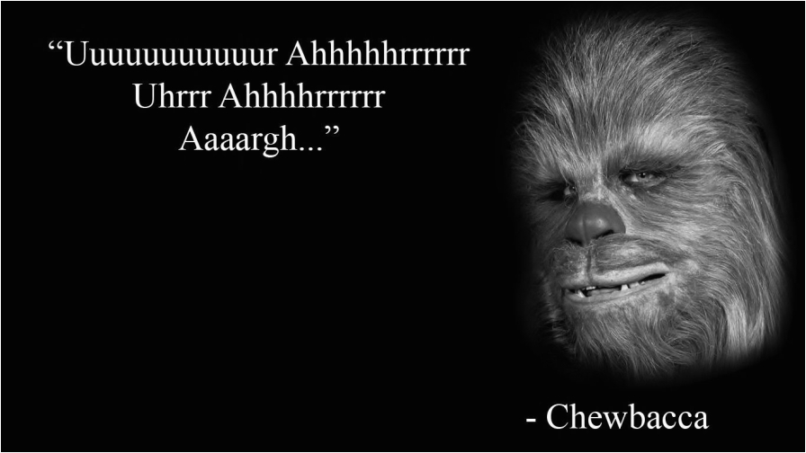 chewbacca meme hd wallpaper no 1