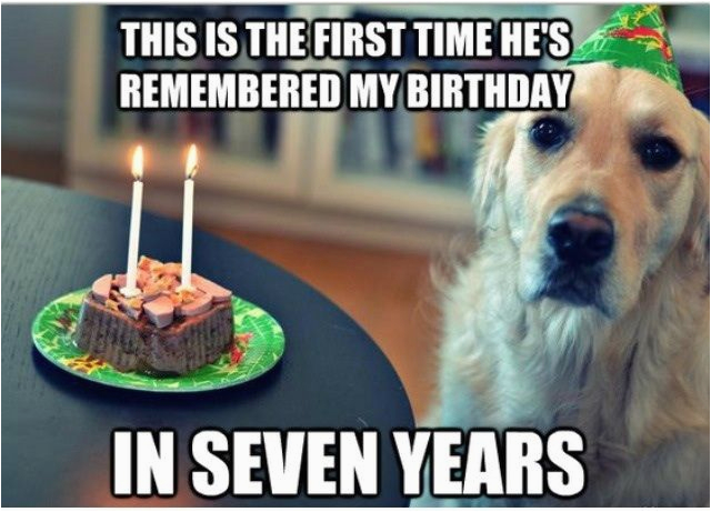 Clean Funny Birthday Memes 144 Best Images About Clean Memes On Pinterest Funny