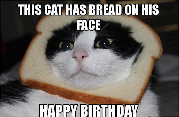 100 happy birthday meme