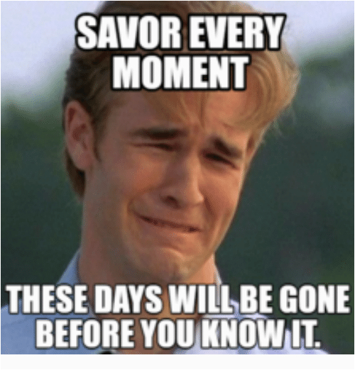 savor every moment these days will be gone before you 10762704