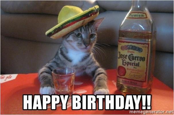 drunk cat happy birthday