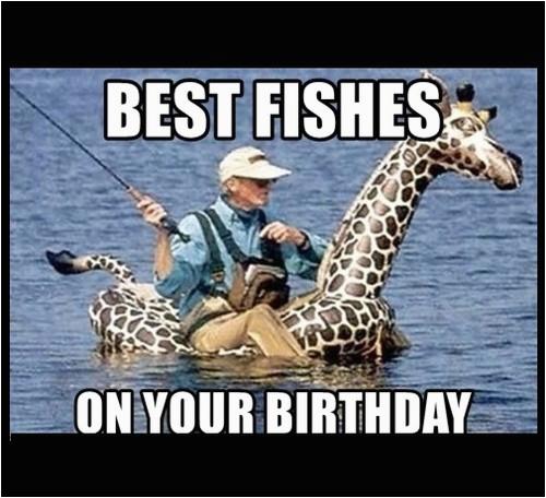 giraffe birthday memes