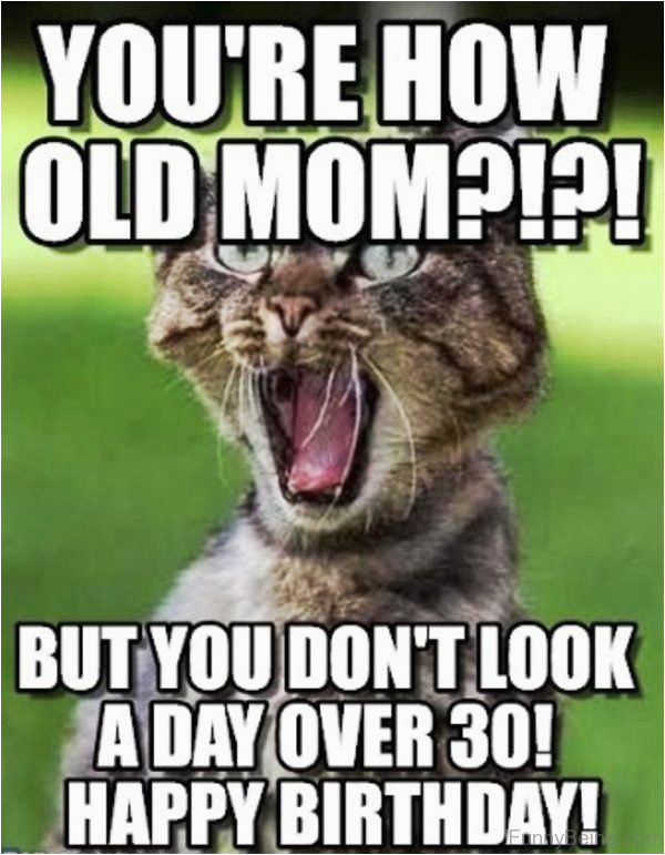 Funny Birthday Memes for Mom Happy Birthday Mom Meme Quotes and Funny Images for Mother