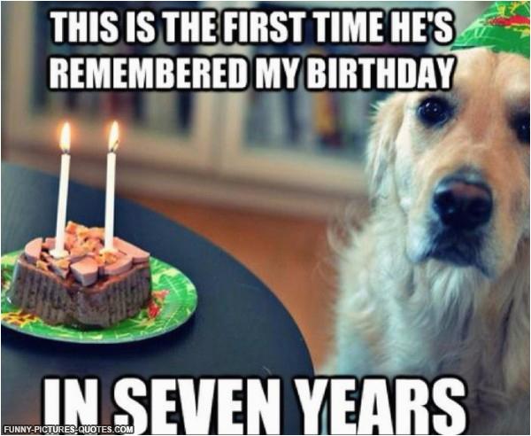 birthday fun dog quotes