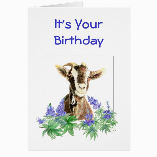Funny Goat Birthday Cards Funny Birthday Flowers From Old Goat Humor Greeting Card