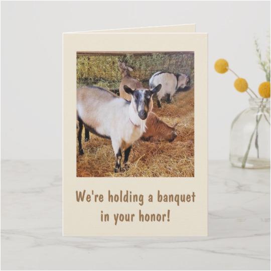 funny goat banquet birthday card 137151696215674337