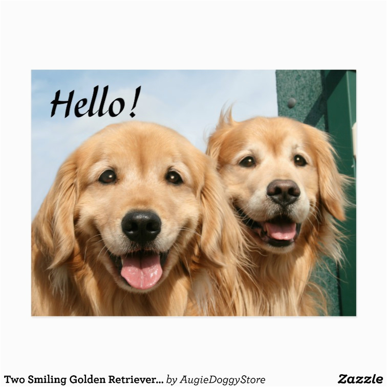 golden retriever birthday meme bn4vhflrefkwts29 7cg 7c umjcnrrek09xxixfxsxxjmc