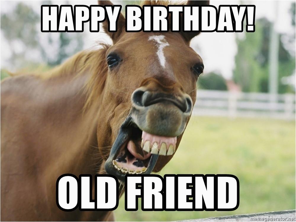 horse luis happy birthday old friend
