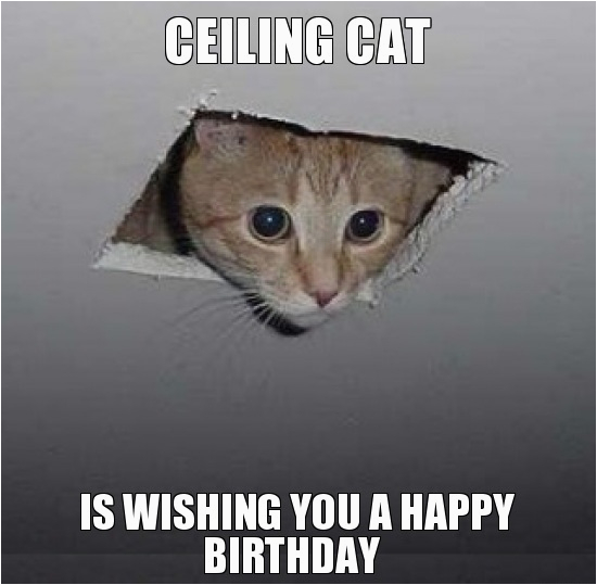 happy birthday gif animated images text png meme funny pics