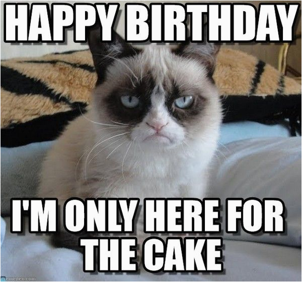 funny birthday memes collection